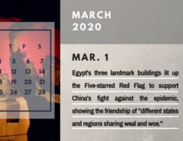 Yearender-Special Report: 2020 Calendar of the Middle East--Egypt