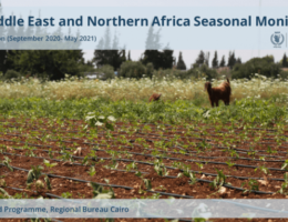 Algeria: Middle East and Northern Africa Seasonal Monitor - End of Season (September 2020 - May 2021)