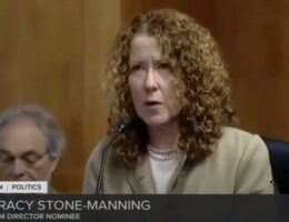 Biden Nominee For Bureau Of Land Management Allegedly Worked With 'Eco-Terrorists'