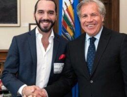 Coup de Grâce for El Salvador's Anti-Corruption Commission