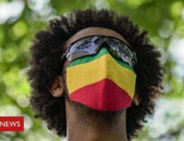 Ethiopia election: A sham or democratic rebirth?
