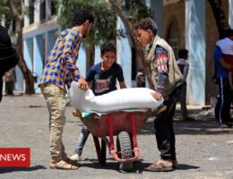 Foreign aid: Charities criticise 'devastating' cuts ahead of G7
