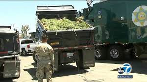 LA County's Largest Drug Bust in History involves Suspected Mexican Cartels