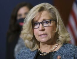 Liz Cheney Says Stuff and It Manages to Add up to Absolutely Nothing