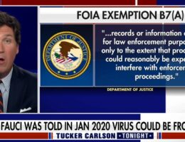 TUCKER: Fauci's Emails Merit 'Criminal Investigation', He May Have Committed 'Perjury' In Confrontation With Rand Paul