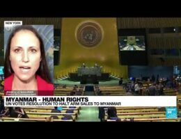 UN General Assembly Calls For Arms Embargo Against Myanmar