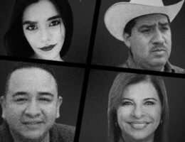 Why is Veracruz Mexico's Most Dangerous State for Political Murders?