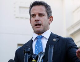 Adam Kinzinger Makes a Dangerous Claim That He Should Either Back up or Shut up About