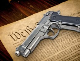 Court Rules Handgun Ban For Adults Under 21 Unconstitutional