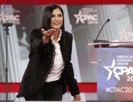 Dana Loesch Throws the Democrats' Excuse for the Gun Crime Surge Into the Wood Chipper