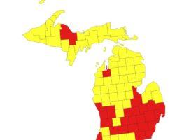 Intelligence Captain Seth Keshel: Trump Margin of Victory in Michigan was 7.5 Percentage Points