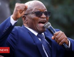 Jacob Zuma: Deadline looms for South African police to arrest former president