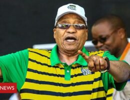 South Africa's Jacob Zuma: From freedom fighter to president to jail