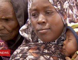 Sudan's Darfur conflict's latest surge in violence displaces thousands