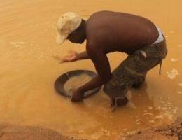 Venezuela's Indigenous Warao Press-Ganged into Guyana's Illegal Gold Mines