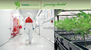 FarmaGrowers Announces World's First GMP Full Spectrum Cannabinoid Exports From South Africa To Australia