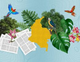 A Long Way to Go: Responses to Environmental Crime in Colombia's Amazon