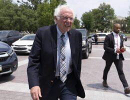 Bernie Sanders Is Pretending to Be a Fighter Again