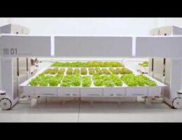 Bill Gates' green tech fund bets on farming robots