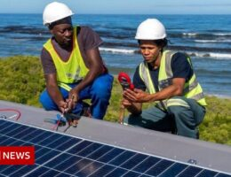 Can green energy power Africa's future?