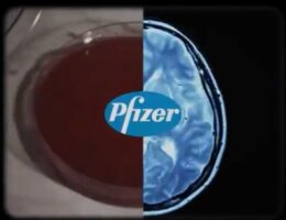 """FDA Authorizes Pfizer Covid Booster Shot for People 65 and Older and """"High Risk"""" Americans"""