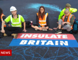 Insulate Britain: Injunction granted against M25 protesters