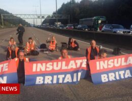 M25 protests: Protesters 'may cause serious injury or death'