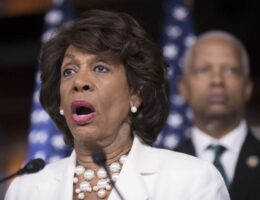 Maxine Waters Has the Craziest Remark You May Find on the CBP and Haitians