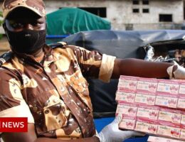 On the trail of fake medicine smugglers in Benin