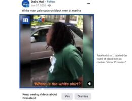 Racist Facebook Apologizes After Social Media Giant Compares Black Men to Primates