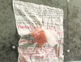 Severed Pig Heads - Widespread Cartel Threats Against Mexican Police