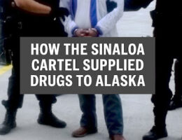 Sinaloa Cartel's Drug Smuggling Route To Alaska Taken Down By US Authorities