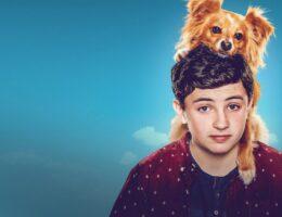 'The Healing Power of Dude' Season 2: Has Netflix Canceled or Renewed?