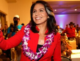 Tulsi Gabbard Is the Latest Dem to Slam Biden on Border Crisis Calls for Return to Trump Policy