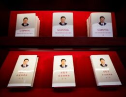 What to make of China's drive towards 'common prosperity'