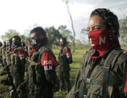 How Many Colombian Fighters are Really Inside Venezuela?
