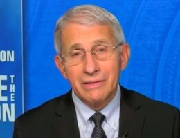 """""""It's Too Soon to Tell"""" – Fauci When Asked if Americans Can Gather For Christmas (VIDEO)"""