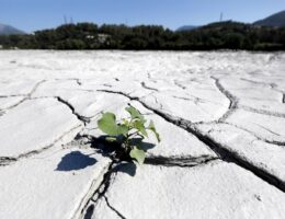 Paphos hosts climate change in Eastern Mediterranean, Middle East global conference
