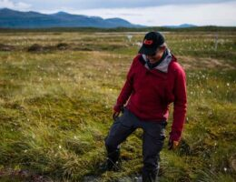 Thawing permafrost in Sweden's wilderness a climate ticking 'time bomb'