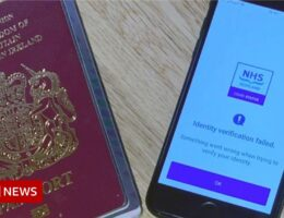 Vaccine passport fix ready in a 'couple of days'